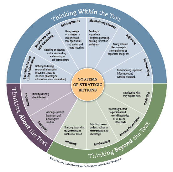 What are the Systems of Strategic Actions?